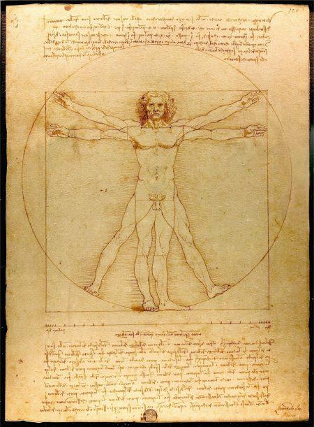 Le Vitruve de Léonard de Vinci