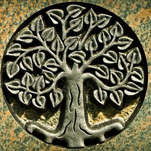 Article suivant : l'arbre de vie et nous